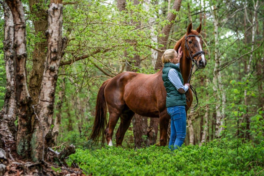 Pferdefotografie in Bremen
